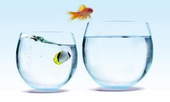 تبدیل موسسات غیر تجارتی به شرکتهای تجاری